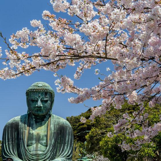 鎌倉観光に最高のロケーションにある長谷壱番館