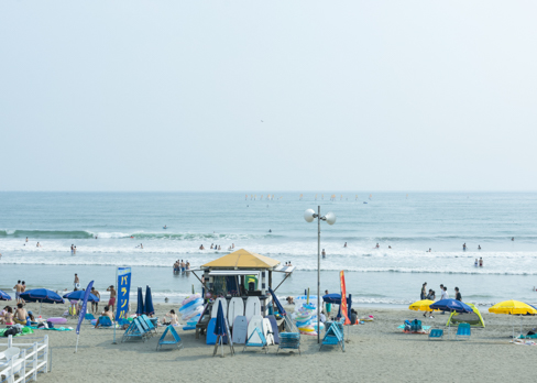 近くにある由比ヶ浜海岸
