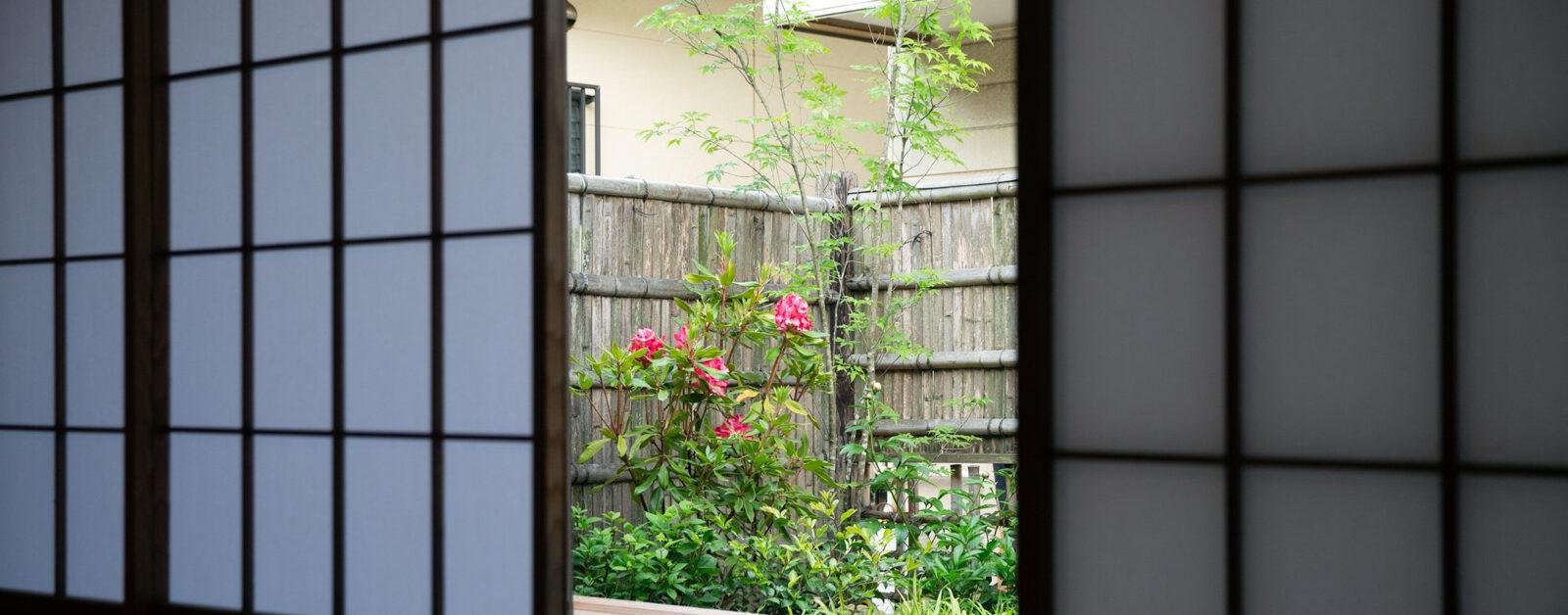 haletto house SAKANOSHITAの窓から見える庭1