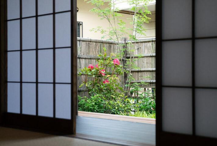 haletto house SAKANOSHITAの窓から見える庭2