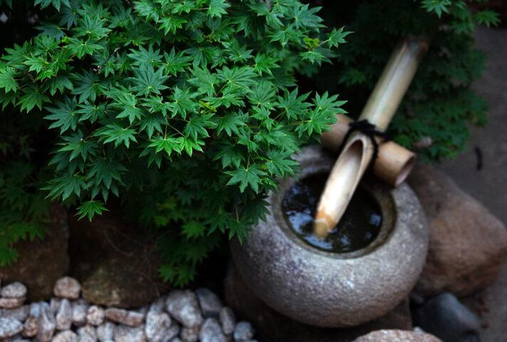 haletto house SAKANOSHITAの庭2